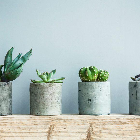 Flower Pot Designs